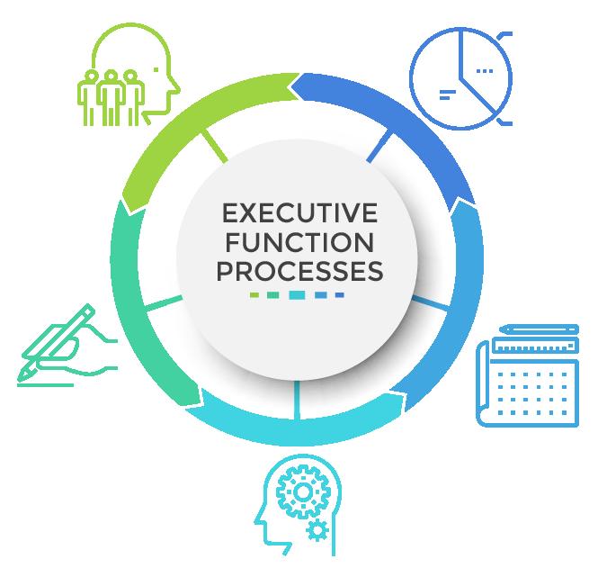 Executive Function-1